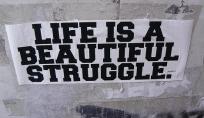 vida-luta